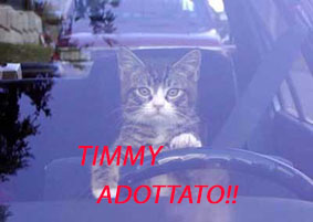 timmy3