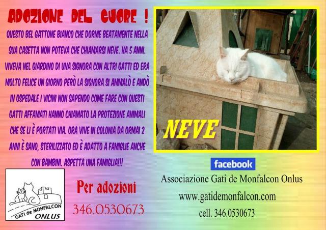 pizap.com14958204187391