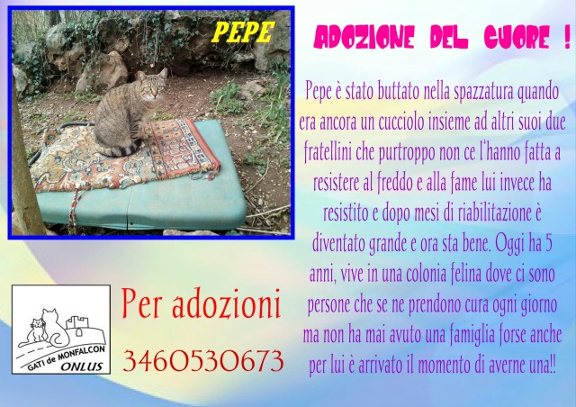 pizap.com14975533992931